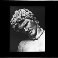 Tête du Galate mourant du Capitole